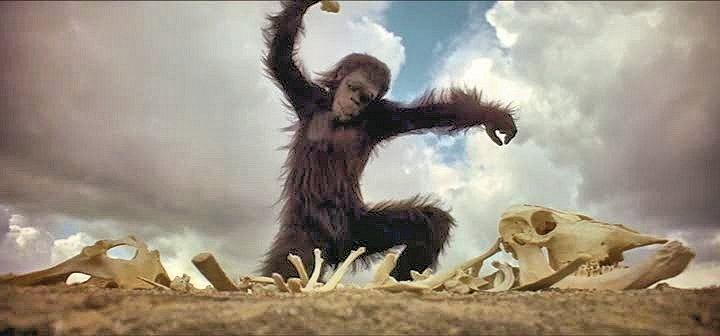 Scène initiale de 2001: l'odyssée de l'espace. Un primate se sert d'un os comme outil ou comme arme