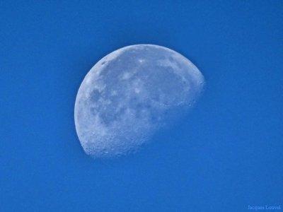 Belle de jour, la Lune le 23 août 2016